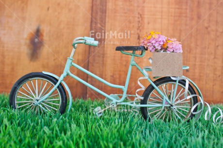 Fair Trade Photo Bicycle, Colour image, Colourful, Flower, Grass, Green, Horizontal, Love, Marriage, Peru, South America, Thinking of you, Transport, Valentines day, Wedding, Wood