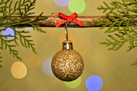 Fair Trade Photo Adjective, Christmas, Christmas decoration, Christmas tree, Colour, Colour image, Horizontal, Object, Pine, Place, Red, South America, Staple