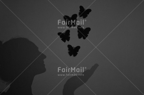 Fair Trade Photo Artistique, Black and white, Butterfly, Condolence/Sympathy, Get well soon, Horizontal, Peru, Shadow, Shooting style, South America