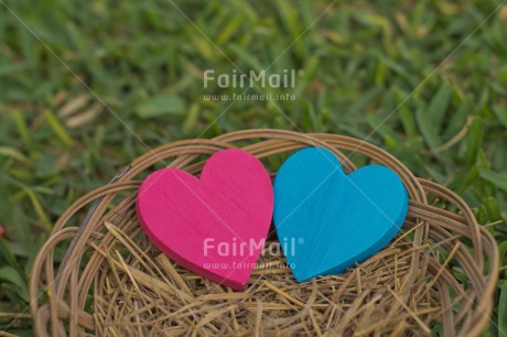 Fair Trade Photo Blue, Colour image, Easter, Fathers day, Grass, Green, Heart, Horizontal, Love, Mothers day, Nest, Outdoor, Peru, Pink, Seasons, South America, Spring, Summer, Valentines day