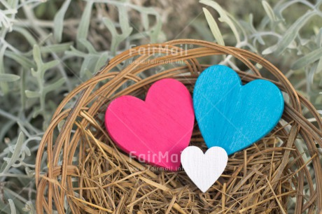 Fair Trade Photo Blue, Christmas, Colour image, Easter, Heart, Horizontal, Love, Nest, New baby, Outdoor, Peru, Pink, Seasons, Snow, South America, Spring, Summer, White, Winter