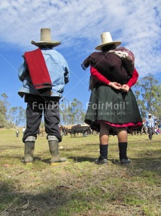 Fair Trade Photo Animals, Clothing, Colour image, Cow, Dailylife, Ethnic-folklore, Farmer, Friendship, Love, Market, Marriage, Multi-coloured, Nature, One man, One woman, Outdoor, People, Peru, Rural, Skirt, Sombrero, South America, Together, Traditional clothing, Vertical