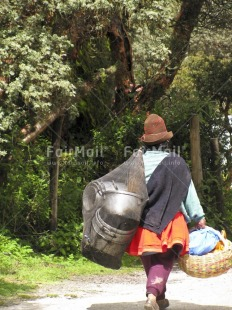 Fair Trade Photo Activity, Carrying, Clothing, Colour image, Day, Forest, Hat, Nature, One woman, Outdoor, Pan, People, Peru, Rural, South America, Traditional clothing, Tree, Vertical, Walking