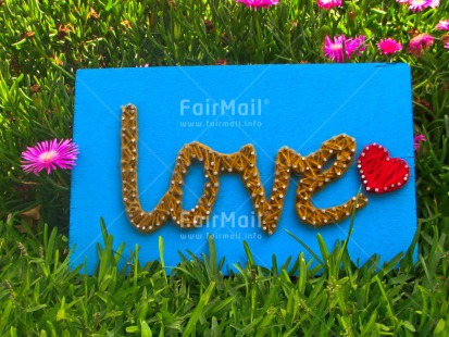 Fair Trade Photo Colour image, Crafts, Flowers, Grass, Green, Heart, Horizontal, Love, Nature, Peru, Red, South America, Text, Valentines day, Wool