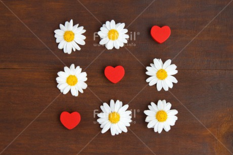 Fair Trade Photo Brown, Colour image, Daisy, Fathers day, Flower, Flowers, Game, Heart, Indoor, Love, Marriage, Mothers day, Peru, Red, South America, Studio, Valentines day, Wedding, White, Wood