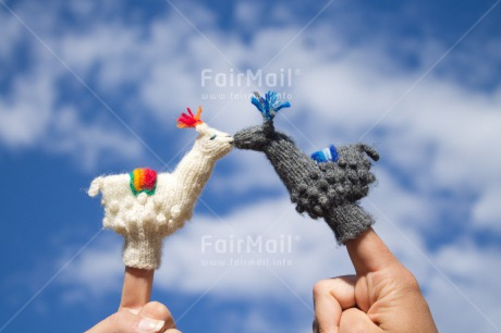 Fair Trade Photo Activity, Animals, Black, Blue, Clouds, Colour image, Couple, Day, Finger, Horizontal, Kissing, Llama, Love, Marriage, Outdoor, Peru, Sky, South America, Toy, Valentines day, Wedding, White