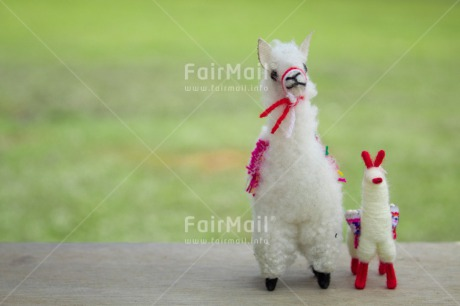 Fair Trade Photo Animals, Child, Colour image, Couple, Fathers day, Friendship, Llama, Love, Mother, Mothers day, Outdoor, Peru, South America, Together, Toy, Two