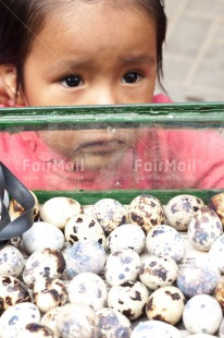 Fair Trade Photo Colour image, Egg, Food, Food and alimentation, Girl, People, Peru, South America, Tarapoto travel. market, Vertical