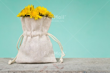 Fair Trade Photo Bag, Birthday, Blue, Chachapoyas, Colour image, Condolence/Sympathy, Flower, Friendship, Get well soon, Horizontal, Love, Mothers day, Nature, Peru, Sorry, South America, Thank you, Thinking of you, Valentines day, Yellow