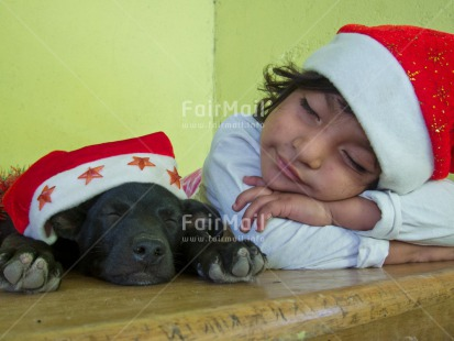 Fair Trade Photo Activity, Animals, Christmas, Colour image, Dog, Funny, Horizontal, One girl, People, Peru, Sleeping, South America, Star