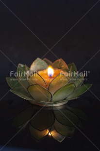 Fair Trade Photo Candle, Colour image, Condolence/Sympathy, Flower, Lotus flower, Peru, South America, Vertical
