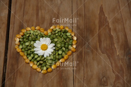 Fair Trade Photo Colour image, Food and alimentation, Heart, Horizontal, Lentils, Love, Marriage, Peru, South America, Valentines day, Wedding