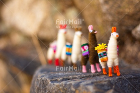 Fair Trade Photo Activity, Animals, Colour image, Colourful, Day, Flower, Friendship, Group, Holiday, Horizontal, Llama, Mountain, Multi-coloured, Outdoor, Peru, Seasons, South America, Stone, Summer, Team, Together, Toy, Travel, Travelling, Walking, Winter