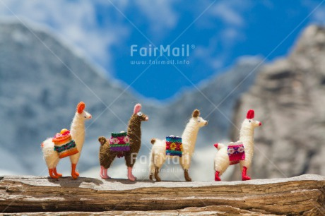 Fair Trade Photo Activity, Animals, Colour image, Colourful, Day, Friendship, Group, Holiday, Horizontal, Llama, Mountain, Multi-coloured, Nature, Outdoor, Peru, Seasons, South America, Stone, Summer, Team, Together, Toy, Travel, Travelling, Walking, Winter, Wood