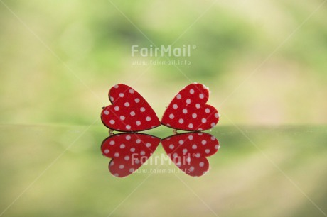 Fair Trade Photo Animals, Colour image, Dots, Fathers day, Friendship, Good luck, Green, Heart, Ladybug, Love, Marriage, Mothers day, Peru, Red, Seasons, South America, Spring, Success, Valentines day, Wedding