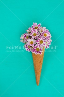Fair Trade Photo Birthday, Colour image, Fathers day, Flower, Food and alimentation, Friendship, Ice cream, Love, Mothers day, Peru, Seasons, South America, Spring, Summer, Valentines day, Vertical