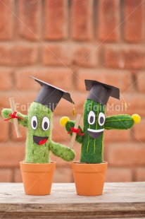 Fair Trade Photo Brick, Cactus, Clothing, Colour image, Congratulations, Diploma, Hat, Outdoor, Peru, Smile, South America, Success, Two, Vertical