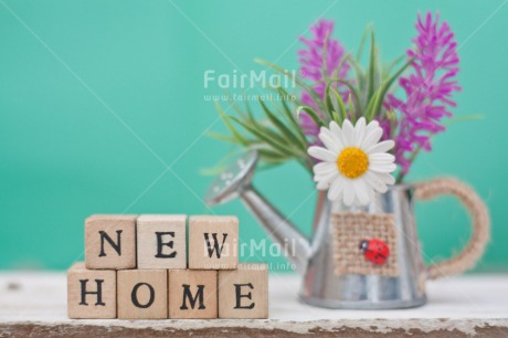 Fair Trade Photo Colour image, Daisy, Flower, Home, Horizontal, Letters, Moving, New home, Peru, South America, Text, Water, Watering can, Welcome home