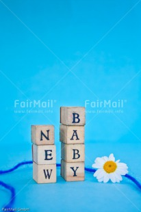 Fair Trade Photo Birth, Boy, Colour image, Daisy, Flower, Letter, New baby, People, Peru, South America, Text, Vertical