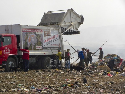 Fair Trade Photo Activity, Animals, Casual clothing, Clothing, Colour image, Day, Dog, Garbage, Garbage belt, Group of men, Horizontal, Outdoor, People, Peru, Sanitation, South America, Transport, Truck, Working