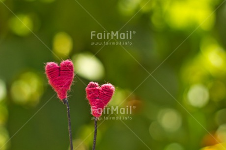 Fair Trade Photo Colour image, Green, Heart, Horizontal, Love, Marriage, Mothers day, Peru, Pink, South America, Thinking of you, Valentines day, Wedding