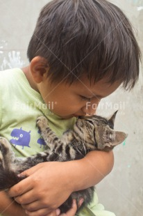 Fair Trade Photo Animals, Cat, Child, Colour image, Emotions, Felicidad sencilla, Friend, Friendship, Happiness, Happy, Peru, South America, Vertical