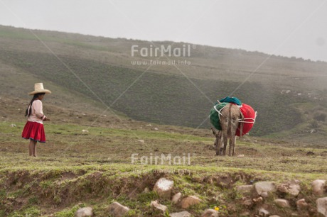 Fair Trade Photo 10-15_years, Animals, Clothing, Day, Donkey, Emotions, Horizontal, Latin, Loneliness, Mountain, One girl, Outdoor, People, Rural, Scenic, Sombrero, Traditional clothing, Travel