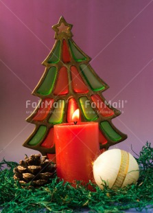 Fair Trade Photo Candle, Christmas, Colour image, Flame, Peru, Pine, South America, Star, Tree, Vertical