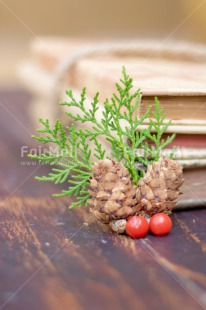 Fair Trade Photo Adjective, Book, Christmas, Christmas decoration, Colour, Colour image, Object, Pine, Pine cone, Place, Red, South America, Vertical, Wood