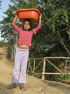 Fair Trade Photo 5 -10 years, Activity, Carrying, Casual clothing, Child labour, Clothing, Colour image, Day, Latin, Looking at camera, One girl, Outdoor, People, Peru, Portrait fullbody, Rural, Social issues, South America, Strength, Tree, Vertical, Working