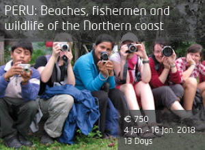 Photography trip Beaches, Fishermen and Wildlife of the Northern Coast January 2018