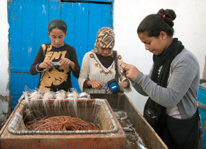 FairMail Morocco teenagers in action in November 2012