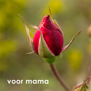 New Mothersday Card