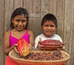 Children of cacao producers from the Peruvian Amazon showing their parents harvest